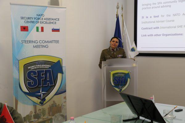 Insights on Strategic Advising for SFA project presentation